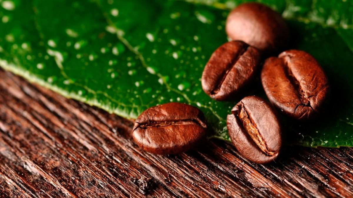 Так неотфильтрованный кофеин попадает в клетки мозга и только усугубляет эффект усталости