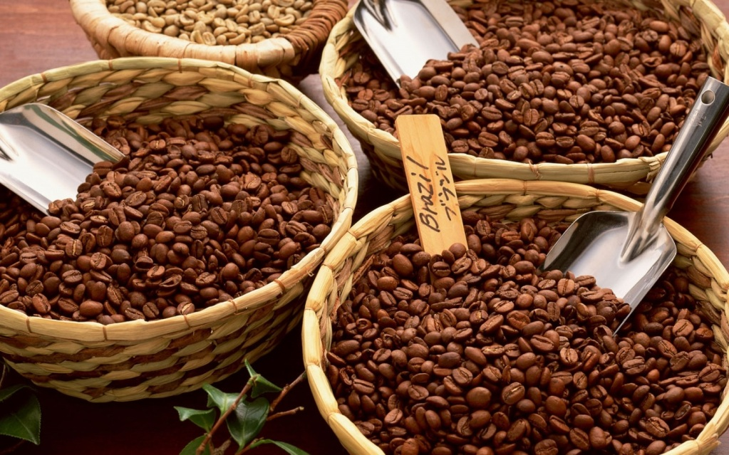 Самые популярные варианты зерна - арабика и робуста